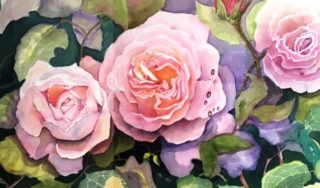 A Watercolour painting by Glenys Gaston in the Contemporary Realist style  depicting Flowers with main colour being Olive and Pink and titled Old Rambling Rose