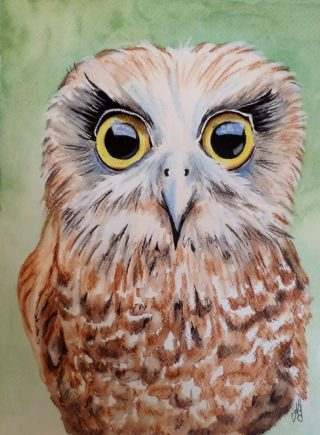 A Watercolour painting by Anne Gardner in the Realist Impressionist style  depicting Animals Birds and Bush with main colour being Brown and Green and titled Boobook owl