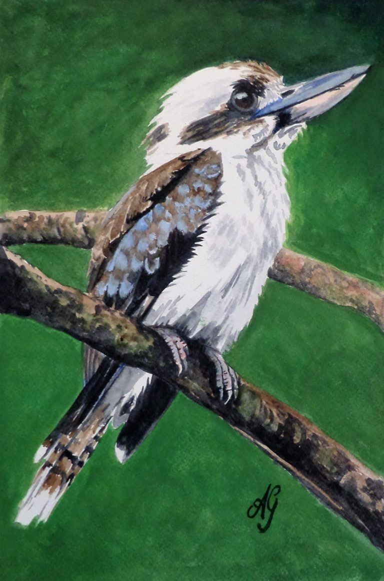 Watercolour Painting by Anne Gardner titled Old Man Kookaburra