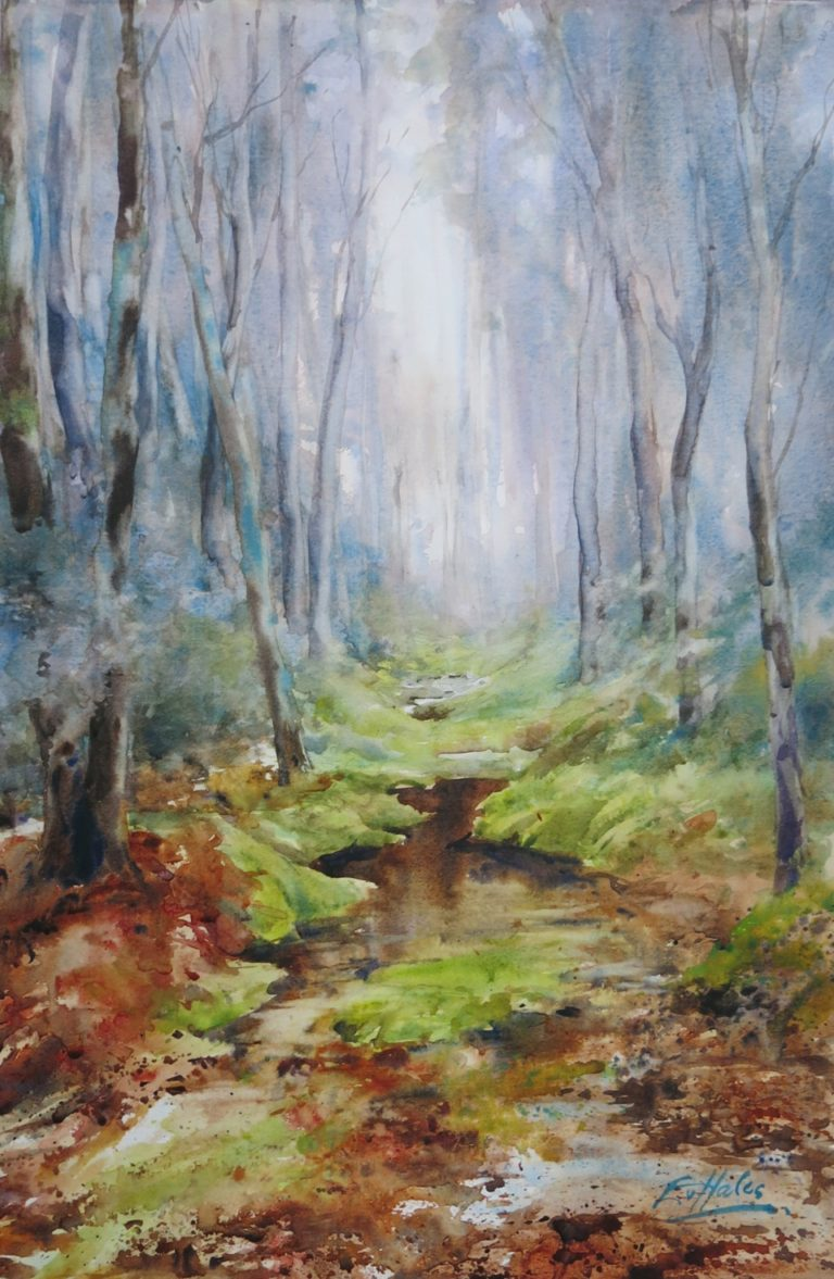 Watercolour Painting by Ev Hales titled Tassie Forest Mood
