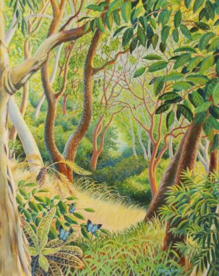 An Acrylic painting by Gregory Pastoll depicting Trees Animals Birds and Fantasy with main colour being Brown Green and Yellow and titled Forest in Far North Queensland