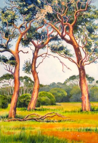 A Watercolour painting by Gregory Pastoll in the Realist style  depicting Trees Farmland with main colour being Brown Gold and Green and titled Trees near Margaret River, WA