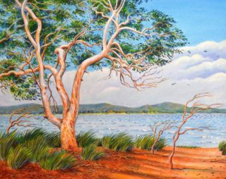 An Acrylic painting by Gregory Pastoll in the Realist style  depicting River and Trees with main colour being Blue Brown and Orange and titled Windy day on the Swan River