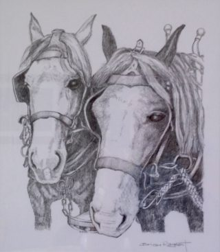 A Pencil drawing by Brian Rayment in the Realist style  depicting Animals Horses with main colour being Grey and titled Work Horses