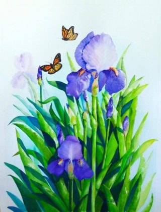 A Watercolour artwork by Ellen Lee Osterfield in the Contemporary Realist style  depicting Flowers with main colour being Blue Green and Orange and titled Iris garden