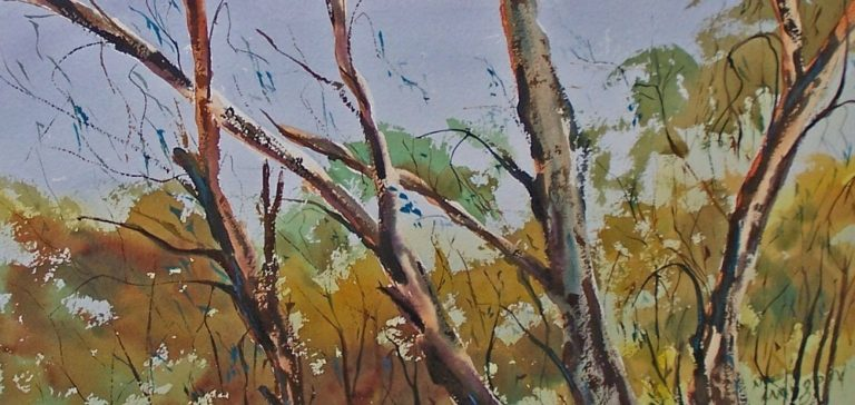 Watercolour Painting by Margaret Morgan-Watkins titled Beneath the Ranges Trawool