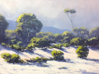 An Oil painting by John Rice in the Impressionist style  depicting Beach Sea and Trees with main colour being Blue Green and Pink and titled Maria Island Dunes