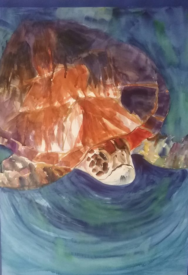 Mixed Media Painting by Marion Hughes titled Visiting Turtle