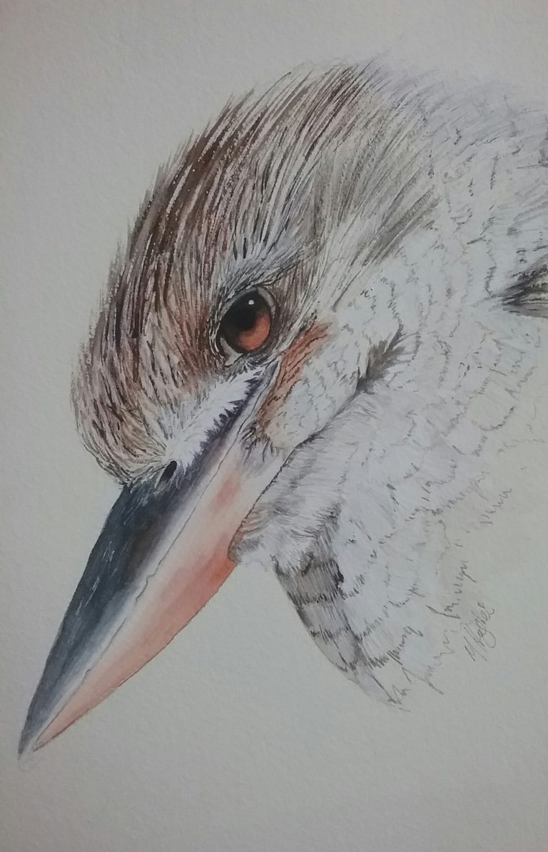 Painting by Marion Hughes titled Blue Winged Kookaburra Portrait