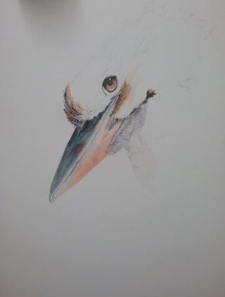 A Watercolour painting by Marion Hughes depicting Animals Birds with main colour being Blue Grey and Pink and titled The Essence