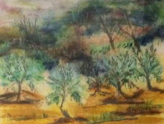 A Pastel painting by Margaret Morgan-Watkins depicting Landscape Trees with main colour being Ochre and Olive and titled The Olive Grove Strath Creek