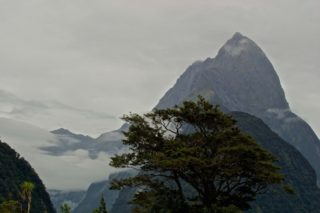 A  photograph by Philip Bell depicting Landscape Mountains with main colour being Grey and titled Milford Sound -floating