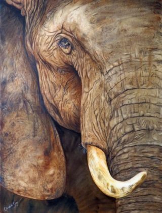 A Watercolour artwork by Christelle Grey in the Realist style  depicting Animals with main colour being Brown and Ochre and titled Wrinkles and Wisdom