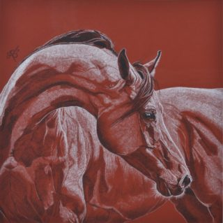 A Charcoal painting by Ainslie Gilles-Patel in the Contemporary Realist style  depicting Animals and Horses with main colour being Black Red and White and titled Contemplation