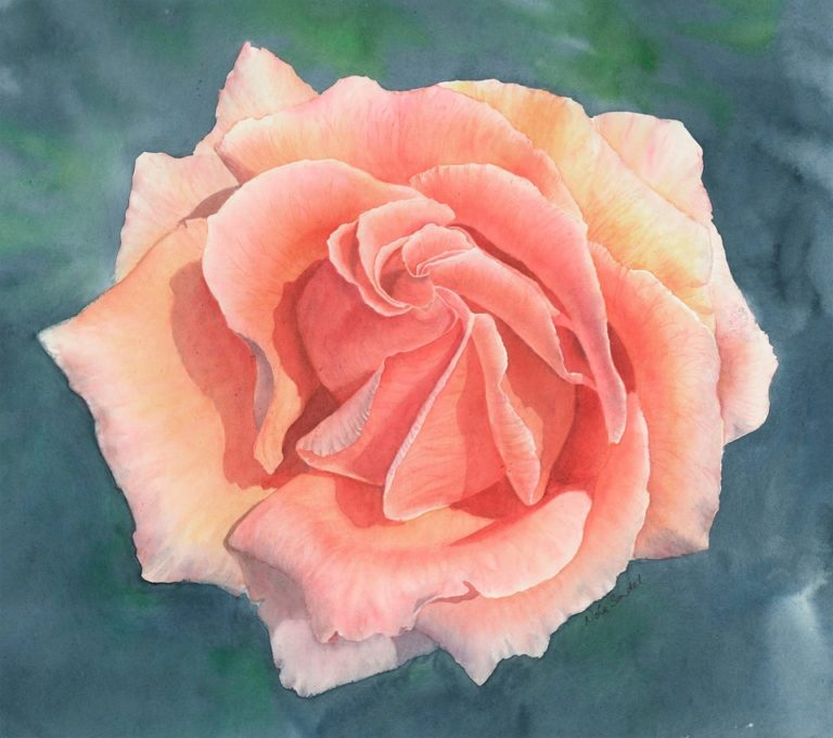 Watercolour Painting by Nola Sindel titled Rosa, Just Joey