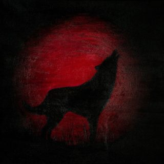 An Acrylic painting by Christine Sinclair in the Illustrative style  depicting Animals Moon with main colour being Black and Red and titled The Calling