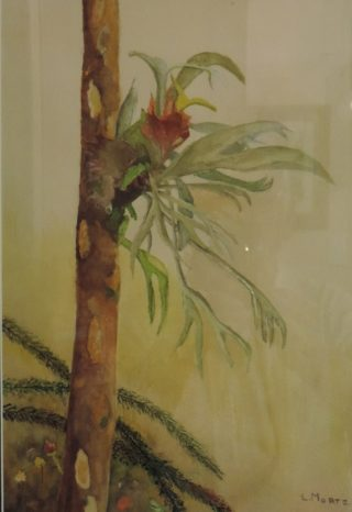 A Watercolour painting by Les Mortimer Garden with main colour being Green Ochre and Olive and titled Elk Horn