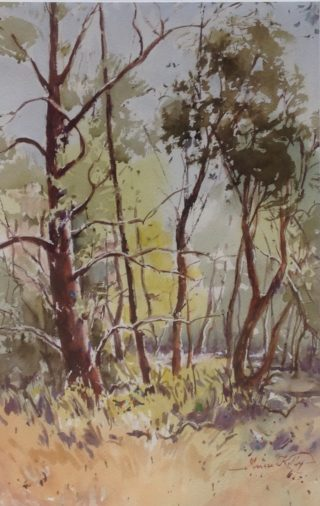 A Watercolour artwork by Annee Kelly in the Impressionist style  depicting Landscape Trees with main colour being Blue Ochre and Olive and titled Dancing of the Trees