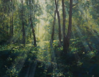 An Acrylic painting by John Duncan depicting Landscape Bush and Trees and titled Forest Light