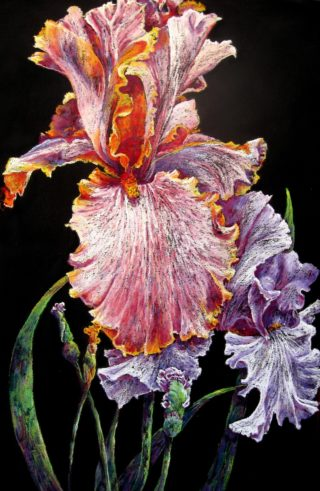 A Pastel artwork by Helen Miles depicting Flowers with main colour being Black Blue and Purple and titled Heads Above the Rest