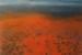 Robert Enemark-12-Uluru from a distance-OzArt Finder