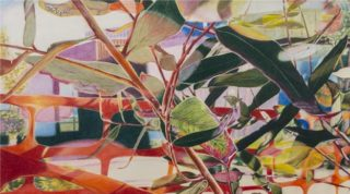 A Coloured Pencils painting by Michelle Ripari in the Contemporary Realist style  depicting Landscape Garden and Trees and titled Fragile
