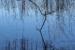 Philip Bell-106-Waterlines II-OzArt Finder