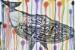 rainbow-whale-camilo-esparza