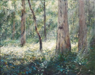 An Acrylic painting by John Duncan depicting Bush and Trees with main colour being Brown and Green and titled Lost Again