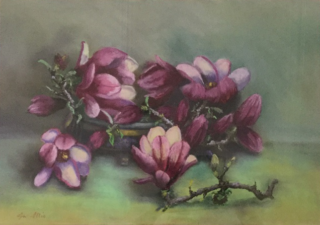 A Pastel artwork by Lyn Ellis depicting Flowers and titled Magnolias