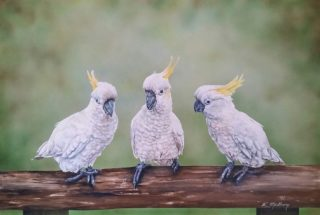 An Acrylic painting by Kathy Medbury in the Realist style  depicting Animals and Birds with main colour being Brown Green and Grey and titled Did you see that?