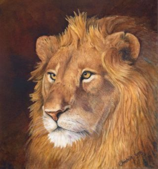 A Watercolour artwork by Christelle Grey in the Realist style  depicting Animals and Cats with main colour being Brown Gold and Ochre and titled The King