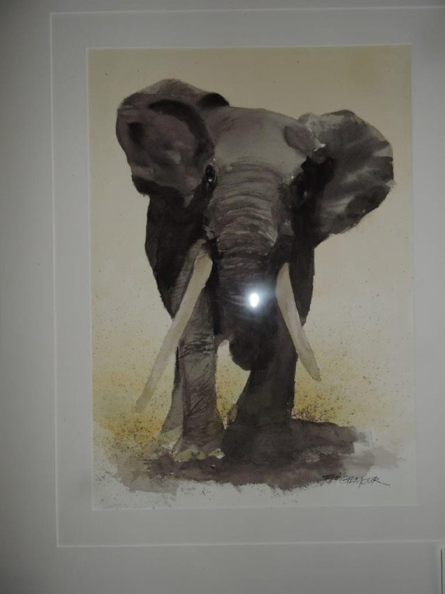 Watercolour Painting by Jeff Gilmour titled Elephant