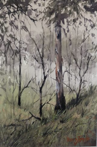 A Watercolour artwork by Terry Jarvis in the Realist Impressionist style  depicting Landscape Bush and Trees with main colour being Grey and Olive and titled Australian Bush