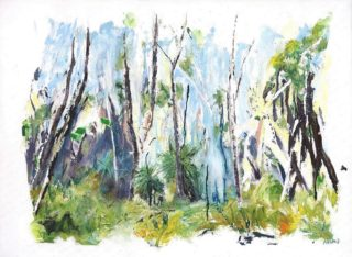 An Oil painting by Jeanette Adams in the Impressionist style  depicting Trees Bush Flowers and Interior with main colour being Blue Brown and Cream and titled Grass Trees In The Forest