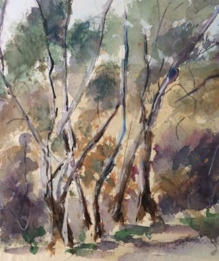 A Watercolour painting by Margaret Morgan Watkins in the Impressionist style  depicting Trees with main colour being Brown Ochre and Olive and titled On a Bush Walk Pyalong