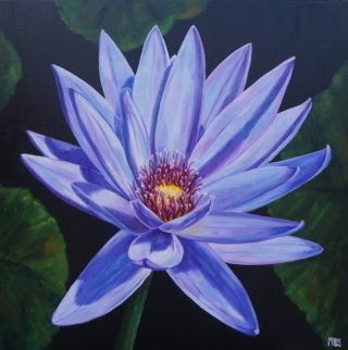 An Oil painting by Moyra Le Blanc Smith in the Realist style  depicting Flowers with main colour being Black Blue and Green and titled Purple Waterlily
