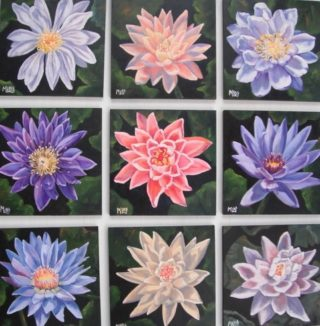 An Oil painting by Moyra Le Blanc Smith in the Realist style  depicting Flowers with main colour being Black Blue and Pink and titled Nine Mini Waterlilies
