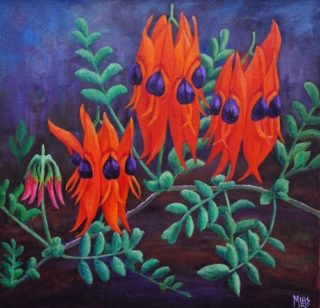 An Oil  painting  by Australian artist Moyra Le Blanc Smith in the Realist style  depicting Flowers with main colour being Black, Blue and Green and titled Sturt's Desert Pea