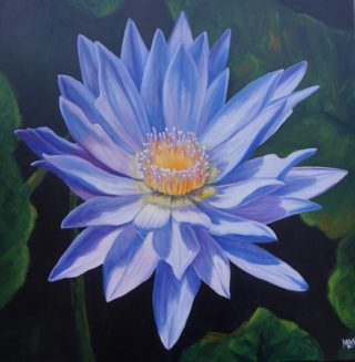 An Oil painting by Moyra Le Blanc Smith in the Realist style  depicting Flowers with main colour being Black Blue and Green and titled Blue Waterlily