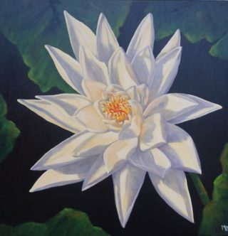 An Oil painting by Moyra Le Blanc Smith in the Realist style  Flowers with main colour being Black Cream and Green and titled Yellow Waterlily
