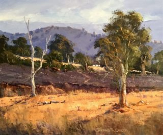 An Oil painting by Diana Garth in the Realist Impressionist style  depicting Landscape Rural with main colour being Blue and Ochre and titled Crudine Area