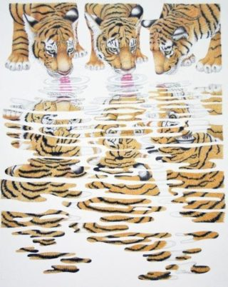 A Coloured Pencils painting by Janet Matthews in the Realist style  depicting Animals with main colour being Grey and Ochre and titled Tiger Cubs Sharing a Drink
