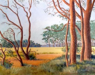 An Acrylic painting by Gregory Pastoll in the Realist Impressionist style  depicting Landscape Farmland and Trees with main colour being Brown Cream and Green and titled Margaret River Farmland