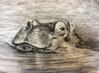 A Charcoal painting by Ainsley McPherson in the Realist style  depicting Animals with main colour being Grey and titled Heads Up