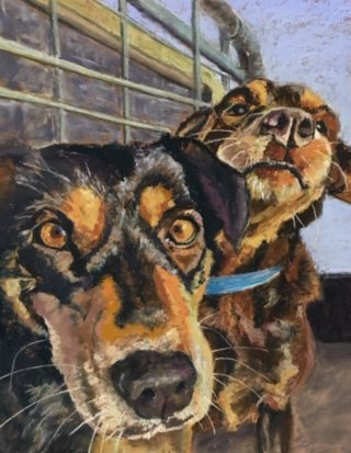 A Pastel painting by Janette Humble in the Realist Impressionist style  Bush and Dogs with main colour being Black Brown and Cream and titled Good Job Boys