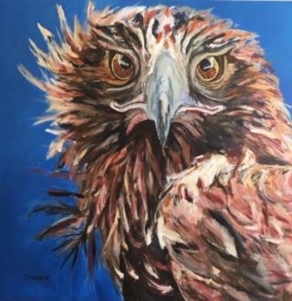 An Acrylic painting by Janette Humble in the Contemporary Realist style  depicting Animals and Birds with main colour being Blue Brown and Cream and titled Eagle Eyes