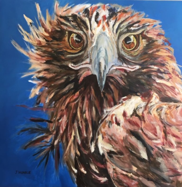 Acrylic Painting by Janette Humble titled Eagle Eyes
