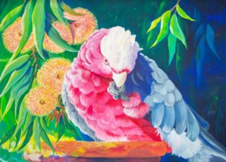 An Acrylic painting by Ellen Lee Osterfield depicting  Birds with main colour being Blue Green and Pink and titled Galah Portrait