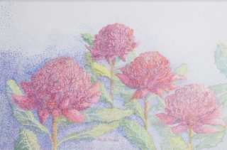 A Coloured Pencils painting by Ellen Lee Osterfield in the Pointillism style  depicting Flowers with main colour being Blue Grey and Pink and titled Red Waratah